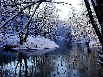 winterula.jpg